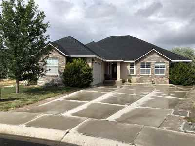 Fernley Single Family Home Price Reduced: 1912 Patrick Cir