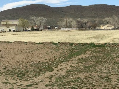 Fernley Residential Lots & Land For Sale: 2005 Snowflower Drive
