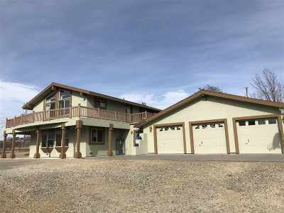 Washoe Valley Single Family Home For Sale: 1530 Brenda Way