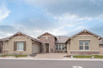 Reno Single Family Home Active/Pending-Loan: 9845 Sea Bird Ln