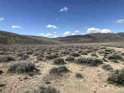 Fernley Residential Lots & Land For Sale: Parcel 021-451-57