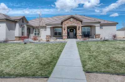 Washoe County Single Family Home Active/Pending-House: 305 Spanish Sand Drive