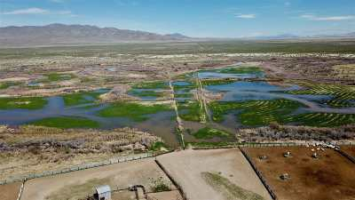 Winnemucca, Orovada, Paradise Valley, Lovelock, Imlay, Golconda Farm & Ranch For Sale: 2500 Flying M Ranch Road