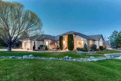 Reno Single Family Home Active/Pending-Loan: 1352 Wolf Run Road