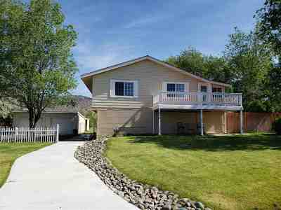 Minden NV Single Family Home For Sale: $535,900