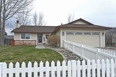 Gardnerville Single Family Home Active/Pending-Loan: 631 Joette