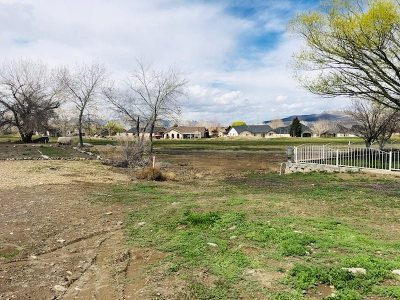 Fernley Residential Lots & Land For Sale: 203 Mary Lou Lane