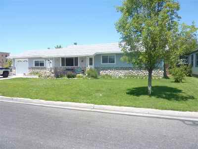 Minden NV Single Family Home For Sale: $399,999