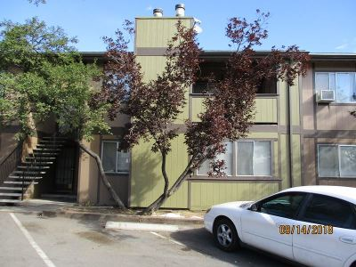 Washoe County Condo/Townhouse For Sale: 2345 Tripp Drive #4