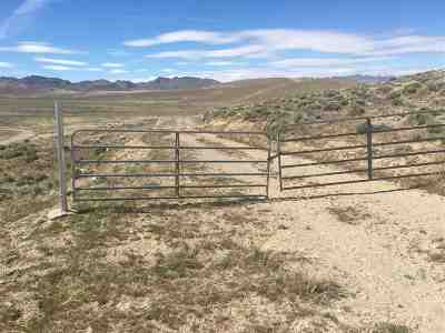 Fernley Residential Lots & Land For Sale: 1 Speedway Road