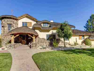 Washoe County Single Family Home For Sale: 330 Sierra Manor Dr