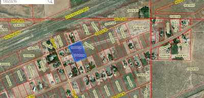 Winnemucca, Orovada, Paradise Valley, Lovelock, Imlay, Golconda Residential Lots & Land For Sale: 13023216 Market St.