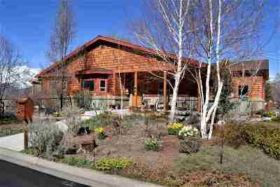 Minden NV Single Family Home For Sale: $579,000