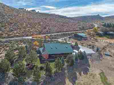 Washoe Valley Single Family Home For Sale: 290 Duck Hill Road