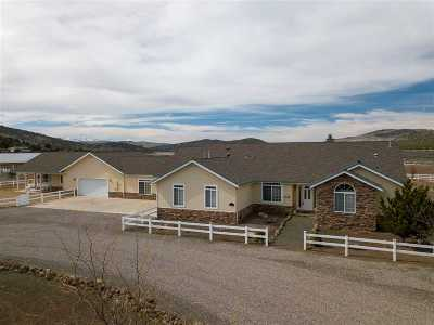 Gardnerville Single Family Home For Sale: 3128 Bodie Road