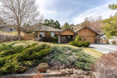 Carson City Single Family Home For Sale: 3122 Upland