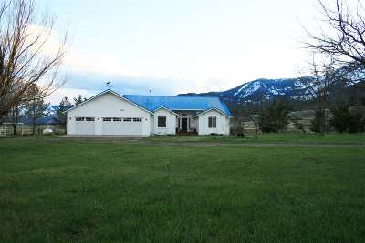 Washoe Valley Single Family Home For Sale: 960 Washoe Dr