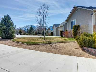 Carson City Single Family Home Active/Pending-House: 770 Jacks Valley Road