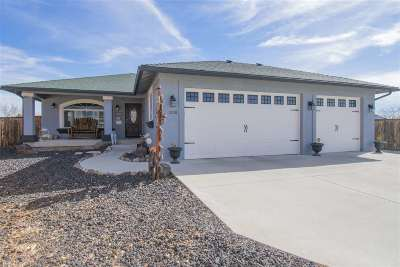 Fernley Single Family Home For Sale: 1508 Putter Ct