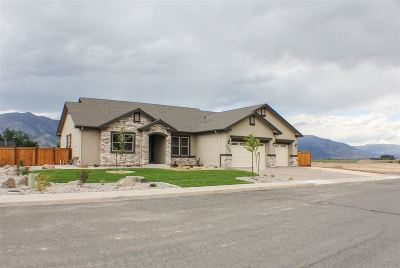 Gardnerville Single Family Home For Sale: 1008 Rocky Terrace