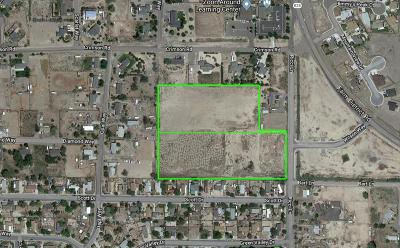 Fernley Residential Lots & Land For Sale: Ricci Ln