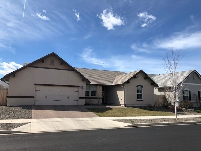 Minden NV Single Family Home For Sale: $479,000