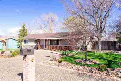 Gardnerville Single Family Home Active/Pending-Loan: 1336 Topaz Lane