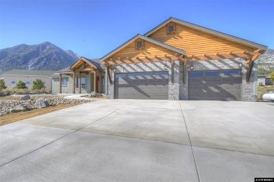Gardnerville Single Family Home For Sale: 884 Evan