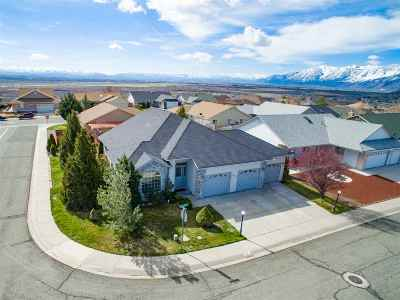 Carson City Single Family Home For Sale: 924 Ranchview Circle