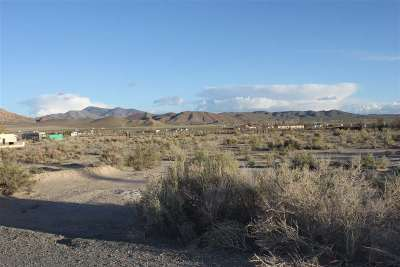 Yerington Residential Lots & Land For Sale: Par A-1 Ogden