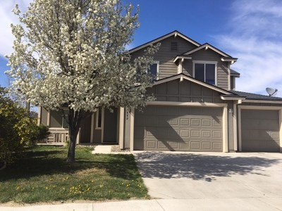 Fernley Single Family Home For Sale: 882 Garnet