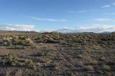 Yerington Residential Lots & Land Active/Pending-Call: Jackson