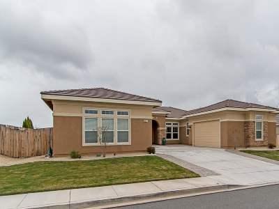 Washoe County Single Family Home Active/Pending-Loan: 4647 Tobago