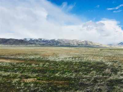 Winnemucca, Orovada, Paradise Valley, Lovelock, Imlay, Golconda Residential Lots & Land For Sale: 001 Mason
