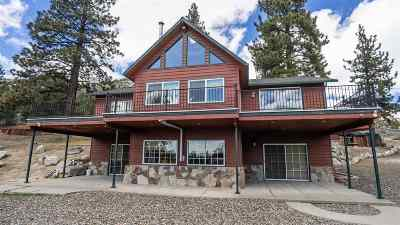 Carson City Single Family Home For Sale: 5341 Sierra Highland Dr.