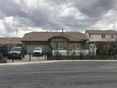 Fernley Single Family Home For Sale: 207 Hazelnut Ct.