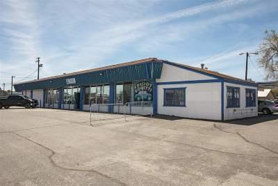 Reno Commercial For Sale: 295 Kietzke Lane