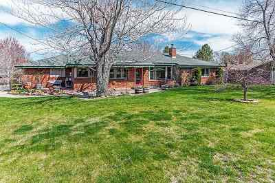 Carson City Single Family Home Active/Pending-Call: 1011 W Musser St