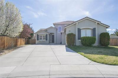 Fernley Single Family Home For Sale: 2943 Walker Court