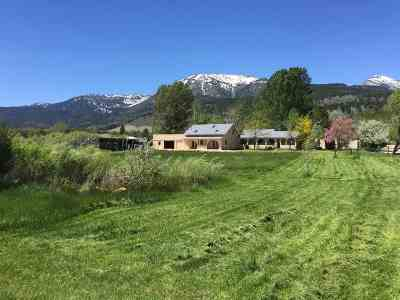 Washoe Valley Single Family Home For Sale: 40 Middlefield Place