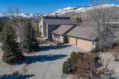 Carson City Single Family Home For Sale: 1734 Brush Drive
