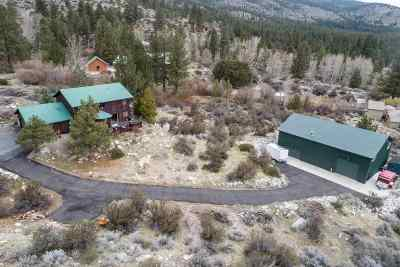 Washoe Valley Single Family Home For Sale: 45 Maranatha Road