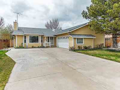 Gardnerville Single Family Home For Sale: 632 Long Valley Rd