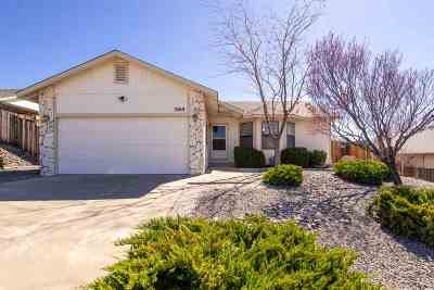 Carson City Single Family Home Active/Pending-Loan: 3569 Loam Lane