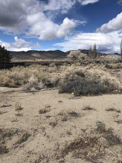 Yerington Residential Lots & Land For Sale: 13 Jacobs Rd