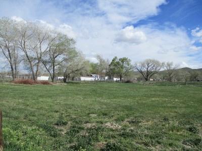 Fernley Residential Lots & Land For Sale: 1370 Bart Lane