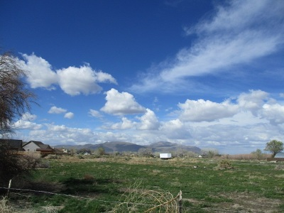 Fernley Residential Lots & Land For Sale: 1240 Farm District