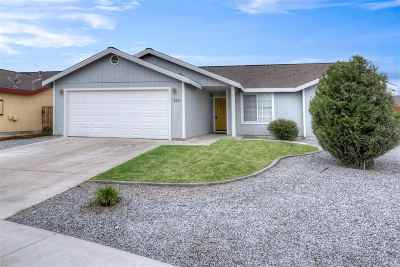 Fernley Single Family Home For Sale: 538 River Ranch Road