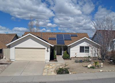 Carson City Single Family Home Active/Pending-House: 1010 Haystack Drive