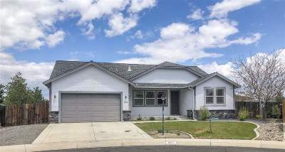 Gardnerville Single Family Home For Sale: 1274 Sierra Vista Dr
